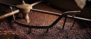 5 étapes clés pour produire un café d'exception : de la fève à la tasse